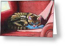 Nikos On Red Chair Greeting Card