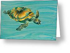 Nik's Turtle Greeting Card by Emily Brantley