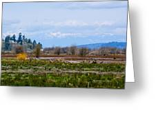 Nisqually Delta Of The Nisqually National Wildlife Refuge Greeting Card
