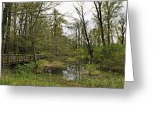Nisqually National Wildlife Refuge/ Boardwalk Greeting Card
