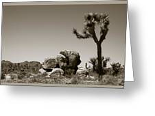 Joshua Tree National Park Landscape No 4 In Sepia  Greeting Card