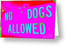 No Dogs Allowed Greeting Card
