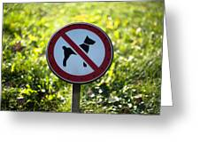 No Dogs Allowed Sign Greeting Card