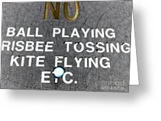 No Fun Greeting Card