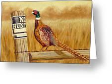 No Hunting   Pheasant Greeting Card
