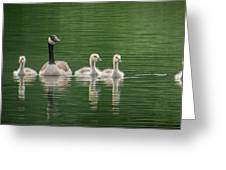 Geese Family Greeting Card