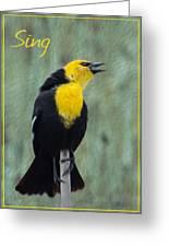 Yellow-headed Blackbird Singing Greeting Card