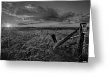 No Pass Black And White Greeting Card
