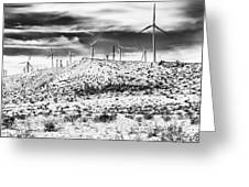 No Place Like Home 1 Bw Palm Springs Greeting Card