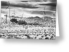 No Place Like Home Bw Palm Springs Desert Hot Springs Greeting Card