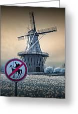 No Tilting At Windmills Greeting Card