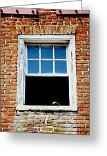 Nobody Home Greeting Card