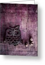 Nocturnal In Pink Greeting Card