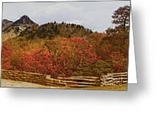 North Carolina Beauty Greeting Card