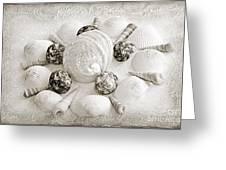 North Carolina Circle Of Sea Shells Bw Greeting Card