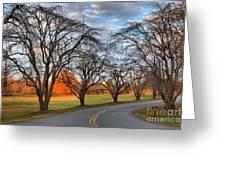 North Carolina Sloan Park Sunset Greeting Card
