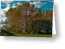 North Lions Park In Mount Vernon Washington Greeting Card