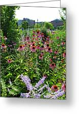 North Point Park Flowers Greeting Card