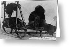 North Pole Sewing, C1909 Greeting Card