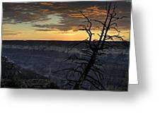 North Rim Dawn Greeting Card