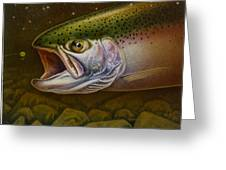 North Shore Steelhead Greeting Card by Jon Q Wright