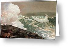 Northeaster Greeting Card