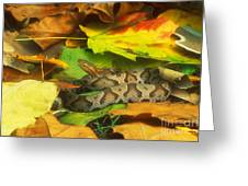 Northern Copperhead Camouflaged Greeting Card
