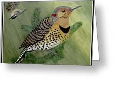 Northern Flicker And Red-breasted Nuthatch Greeting Card
