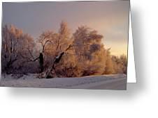 Northern Light Greeting Card