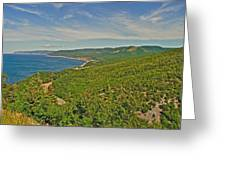 Northern Road Through Cape Breton Highlands Np-ns Greeting Card