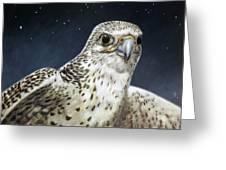 Northern Star Greeting Card