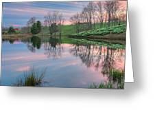 Northfield Daffodils Sunset Greeting Card