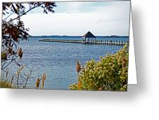 Northside Park Fishing Pier Greeting Card