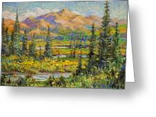 Northwest In The Rockies Greeting Card