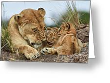 Nostalgia Lioness With Cubs Greeting Card