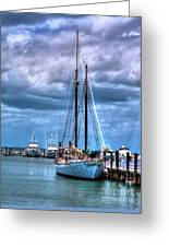Not For Sail Greeting Card