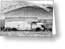 Not In Service Bw Palm Springs Greeting Card by William Dey