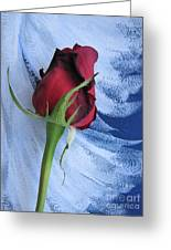 Not Just Another Rose Photograph Art Greeting Card