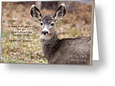 Not Meant To Deer Hunt Greeting Card