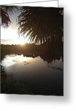 Not Quite Black And White - Sunset Greeting Card