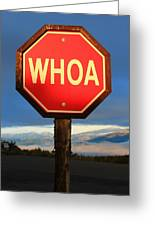 Not Your Ordinary Stop Sign Greeting Card
