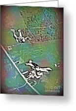 Nova Scotia Skydivers Greeting Card