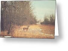 November Deer Greeting Card