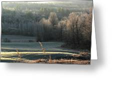 November Frost Greeting Card