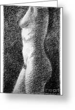 Nude Female Torso Drawings 6 Greeting Card