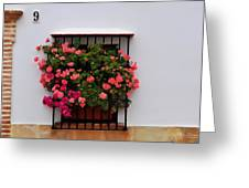 Number 9 - Geraniums In The Window Greeting Card