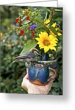 Nuthatch Bird Having Tea Greeting Card