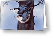 Nuthatch Pair Greeting Card