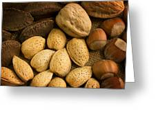 Nuts Aglow Greeting Card