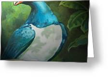 Nz Native Pigeon Kereru Greeting Card by Patricia Howitt
